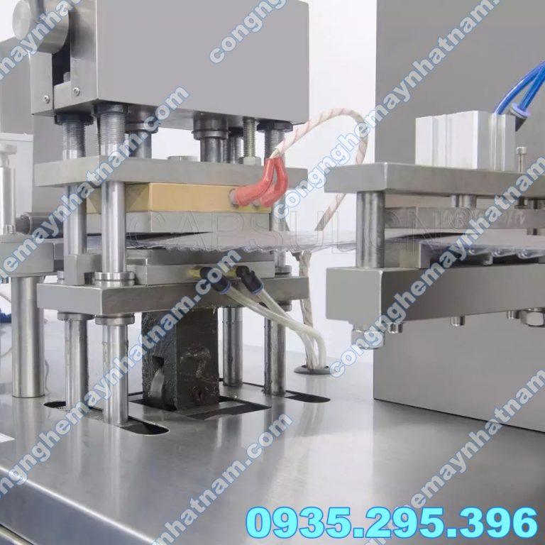 Máy dập vỉ thuốc tự động DPP-350 2